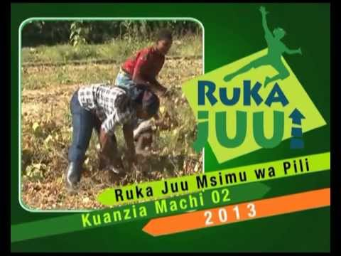Video of Ruka Juu TV Show