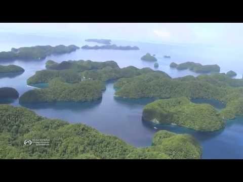 The Global Reef Expedition's Mission to Palau