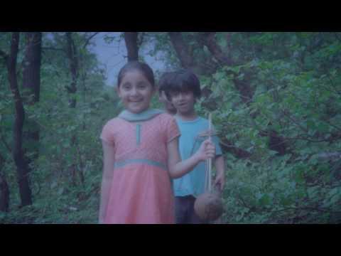 Director - VEENA VAHINI music video