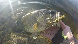 Video Bass Fishing with Bitsy Bug Jig's. Fishing Before Class (FBC) #2 MP3, 3GP, MP4, WEBM, AVI, FLV Mei 2019