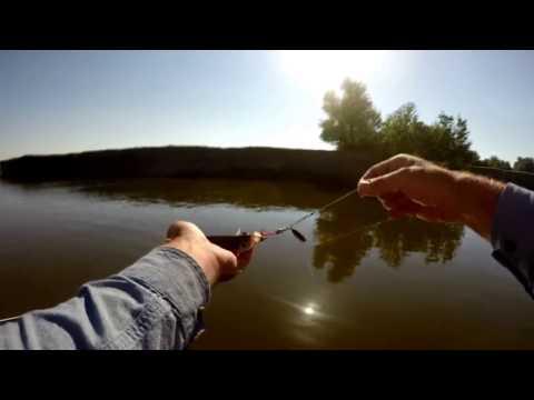 видео рыбалка на реке сарбай