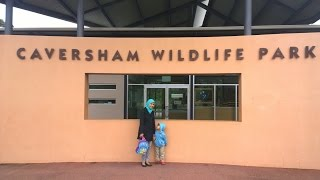 Caversham Australia  city photos gallery : Caversham Wildlife Park Train - Western Australia