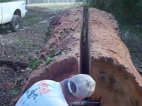 Donk splitting a monster red oak log.