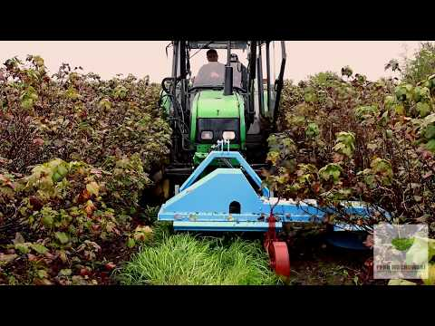 Download Podcinacz gałęzi boczny - bębnowy / Branch undercutter with a hydraulically movable frame HD Mp4 3GP Video and MP3