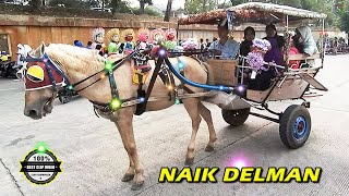Video NAIK DELMAN ISTIMEWA ~ Lagu Anak Indonesia Terpopuler Sepanjang Masa👍 MP3, 3GP, MP4, WEBM, AVI, FLV Mei 2018