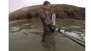 Pembrokeshire United Kingdom  city images : Spearfishing Pembrokeshire UK 2014 Bass & Mullet