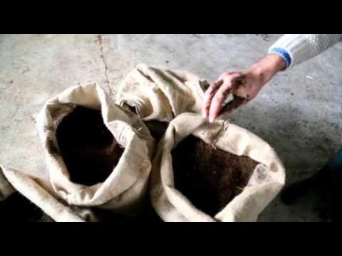 İçme'de solucan gübresi üretiyor