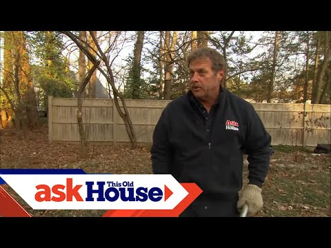 How to Remove Tree Stumps | Ask This Old House
