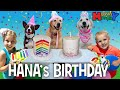Puppy Birthday Party! 🐾🐶 || Mommy Monday