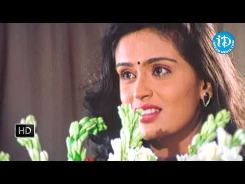 Alludugaru Vacharu Movie - Jagapati Babu, Abbas, Kausalya Best Scene