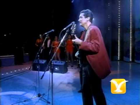 Los Hermanos Zabaleta, Grandes éxitos, Festival de Viña 1993