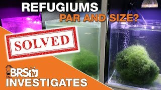 BRStv Investigates - Can Chaetomorpha in a refugium be the ideal reef tank filter?
