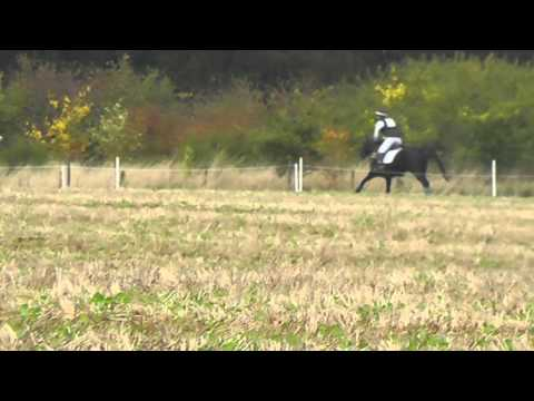 XC Oasby Intermediate October 2015 - 8th
