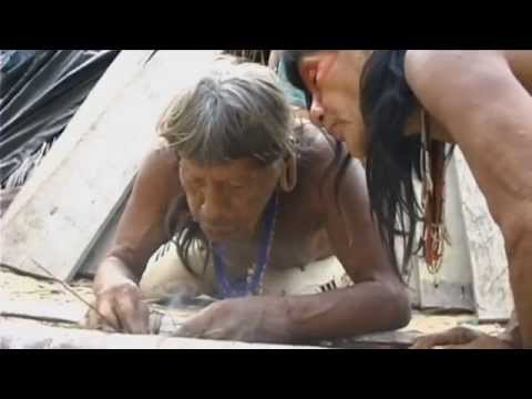 yasuni - Este documental muestra la problemática de la Reserva de la Biosfera Yasuní, en la Amazonia ecuatoriana, que alberga el 20% de las reservas de petróleo del p...