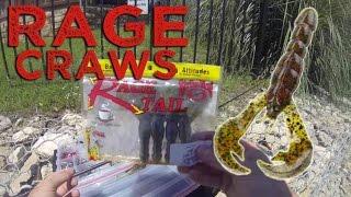 Video Early Summer Bass Fishing: Rage Craws- GoPro MP3, 3GP, MP4, WEBM, AVI, FLV Agustus 2018