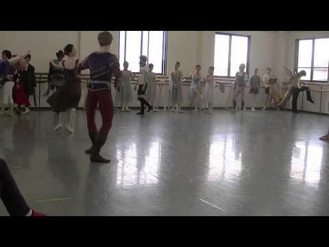 NBA Ballet 真夏の夜の夢