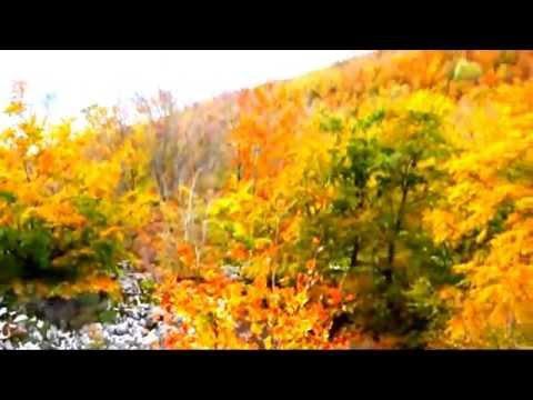 Basque Country Mountais/Van Morrison Tom Jones Photo Basque Country (видео)