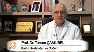 Prof. Dr. Teksen Çamlıbel - Kimlere Tüp Bebek Yapılmaktadır?