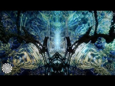 SOME1 - Delicate Vibrations (Full Album)
