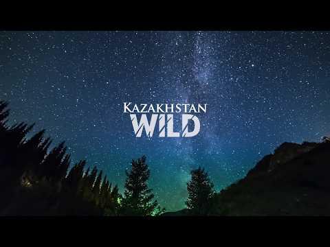 Timelapse - Kazakhstan Wild | Таймлапс - Дикий Казахстан
