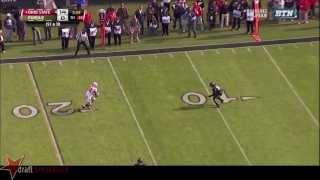 Ricardo Allen vs Ohio State (2013)