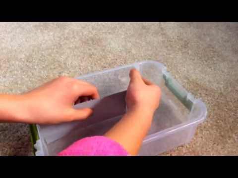 How to make a Rainbow loom rubber band organizer case! (Easy)