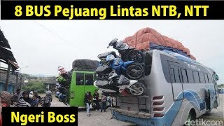 Video 8 BUS Pejuang Lintas Nusa Tenggara MP3, 3GP, MP4, WEBM, AVI, FLV Mei 2019
