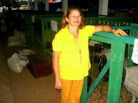 Fotos tirado na Exposição de Santa Quitéria, Ceará - Brasil - Publicação de Pasromes