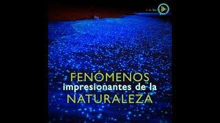 tuiris.comCOMPARTE EL VIDEO CON TODOS TUS AMIGOS Y NO OLVIDES SUSCRIBIRTE! bit.ly/TuirisYT♥CONTACTO - QueOnda@tuiris.com♥PÁGINA  - http://www.tuiris.com♥FACEBOOK: bit.ly/TuirisFB♥TWITTER: bit.ly/TuirisTweet♥INSTAGRAM : bit.ly/TuirisInsta