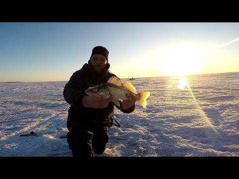 прогноз клева рыбы в татарии