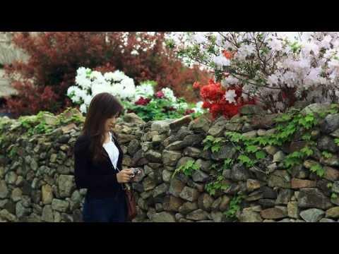 Korean best honeymoon places to go