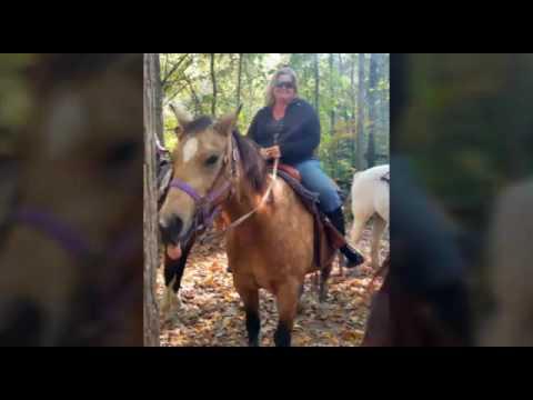 Horseback riding 2016