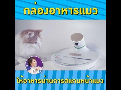 หมดปัญหาแมวแย่งข้าวกัน ด้วยถาดอาหารสแกนหน้าแมว CES2019   เฟื่องลดา - Thời lượng: 64 giây.