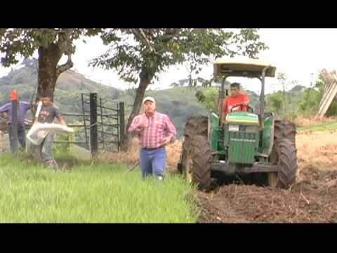 Tierra Pastos y Ganado - Mecanización de Suelos 01 Nov 12 2011