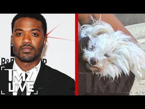 Ray J's Near Fatal Dog Disaster | TMZ Live