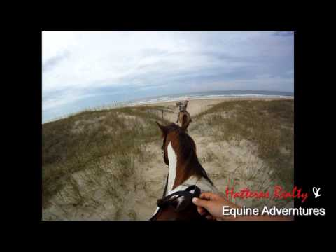 Hatteras Horseback Riding on the Beach