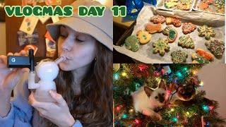 BAKING SPIRITS BRIGHT!! // Vlogmas Day 11 (12.21.19) by Silenced Hippie