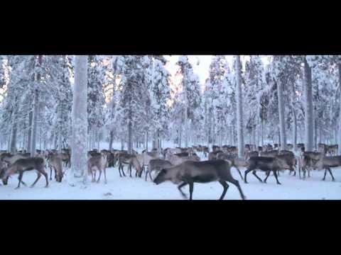 Видео про шины Nokian