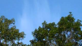 Mount Pocono (PA) United States  City pictures : MY VIDEO CHEMTRAILS IN MY SKY TOP OF MT POCONOS PA USA AUG 22,2012 #1