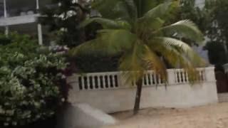 Paynes Bay First Encounter, Barbados / Залив Пейнс, Первая Встреча