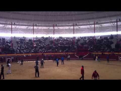 Encierros Valdemorillo 2013