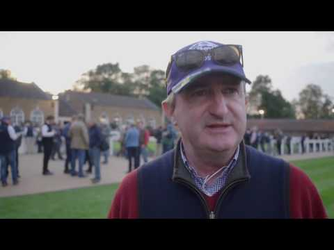 Tattersalls October Yearling Sale Book 1 Day 1 Video Review 2016