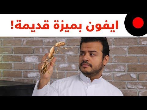 العرب اليوم - شاهد: مِنح دراسية لألعاب الفيديو