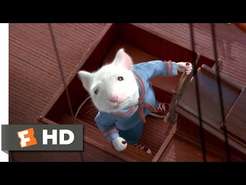 Stuart Little (1999) - Boat Race Scene (5/10)   Movieclips