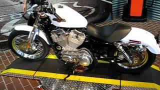 3. 2008 Harley-Davidson Sportster Low XL883L White Gold Pearl