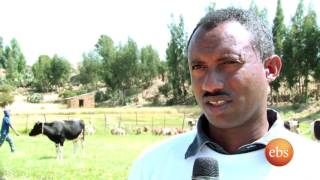 Ebs Reportage  Meskel Celebration in Adigrat part 1
