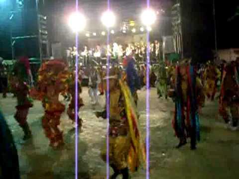 BOI UNIDOS DE PALMEIRANDIA 2009