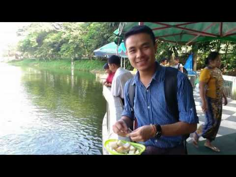 Video Living as a Young Gay Man in Myanmar: Zai Oo - Full Interview download in MP3, 3GP, MP4, WEBM, AVI, FLV January 2017