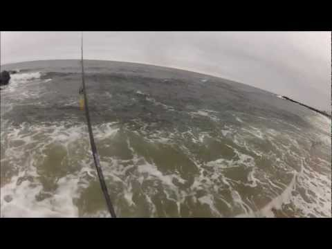 Stripers and Bluefish Blitzing on Peanut Bunker NJ – Oct 2012