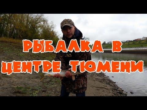 Где ловить рыбу в Тюмени, Street fishing in Russia (видео)